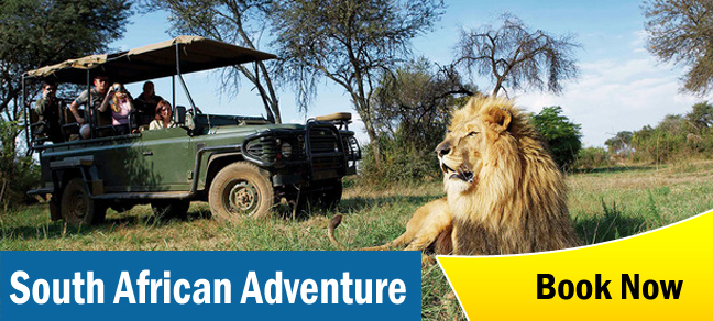South Africa Adventure Tours & Small Group Travel